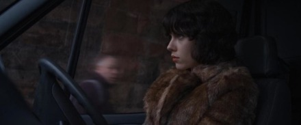 hero_UnderTheSkin-2014-1