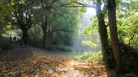 Another horrible London day in Hampstead Heath